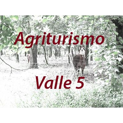 Agriturismo VALLE 5 - Agriturismo Guastalla