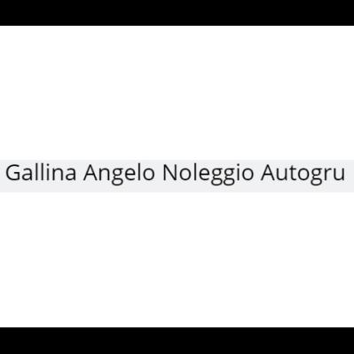Gallina Angelo Noleggio Autogru - Autogru - noleggio Sala Baganza