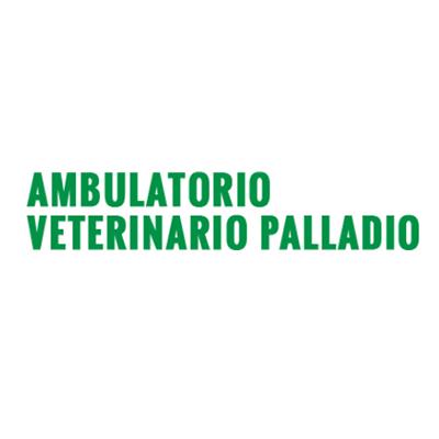 Ambulatorio Veterinario Palladio - Veterinaria - ambulatori e laboratori Verona
