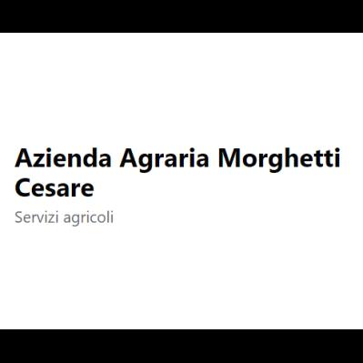 Azienda Agraria Morghetti Cesare