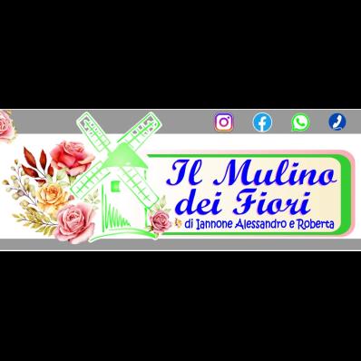 Il Mulino dei Fiori - Fiori e piante - vendita al dettaglio Pontecorvo