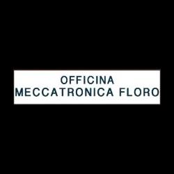 Officina Meccatronica Floro - Autofficine e centri assistenza Cardito