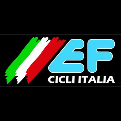 Ef Cicli Italia - Biciclette - vendita al dettaglio e riparazione Grumello del Monte