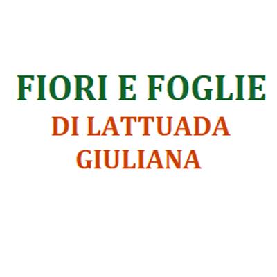 Fiori e Foglie  Lattuada Giuliana - Fiori e piante - vendita al dettaglio Canegrate