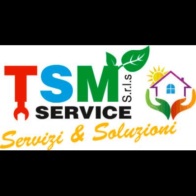 Tsm Service