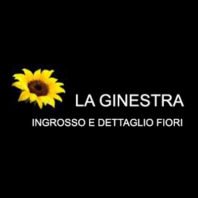 La Ginestra Ingrosso e Dettaglio Fiori