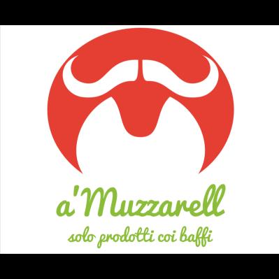a'Muzzarell - Solo prodotti coi baffi - Formaggi e latticini - produzione e ingrosso Sarzana