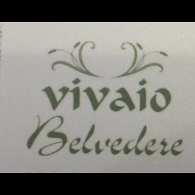 Vivaio Belvedere di Raballo Livio