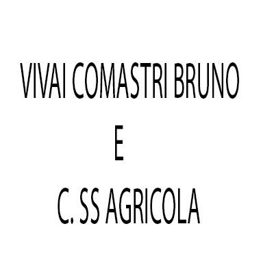 Vivai Comastri Bruno e C. Ss Agricola - Fiori e piante - vendita al dettaglio Argelato
