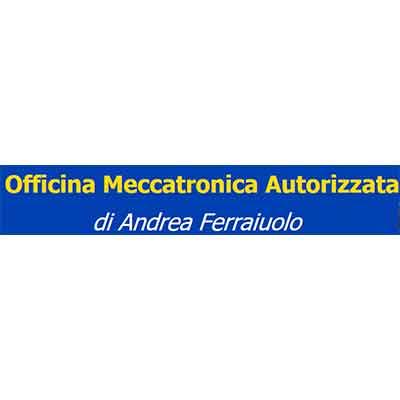 Ferraiuolo Andrea Autofficina e Centro Assistenza - Autofficine e centri assistenza Caserta