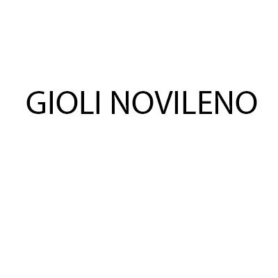 Gioli Novileno - Carpenterie metalliche Vicopisano